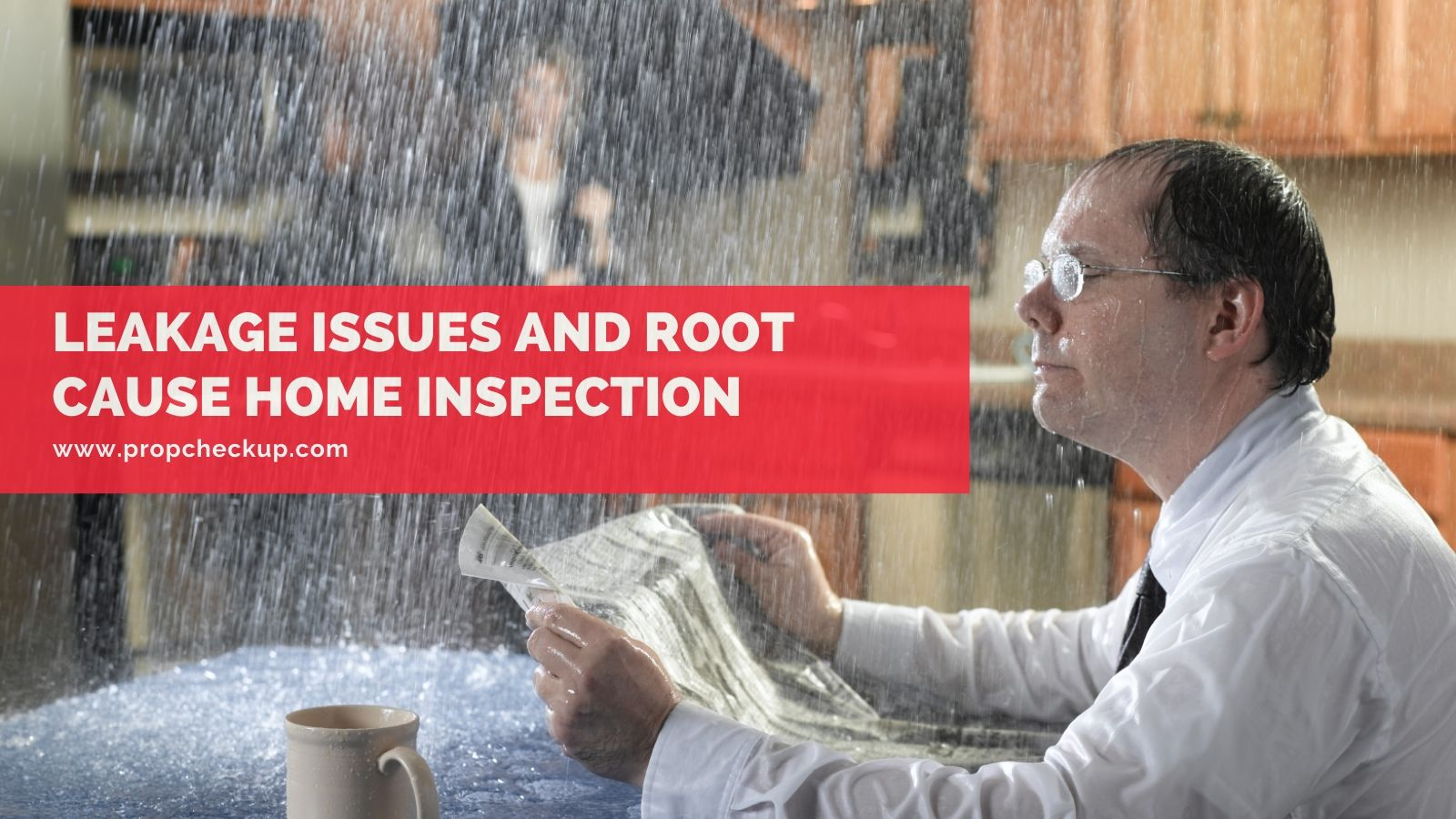 Leakage Issues and Root Cause Home Inspection